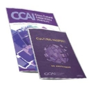 CCAI Action Planning Guide